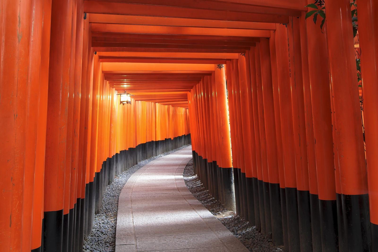 サムハラ神社(大阪)に伝わる怖い話とは?参拝方法やご利益もチェック!