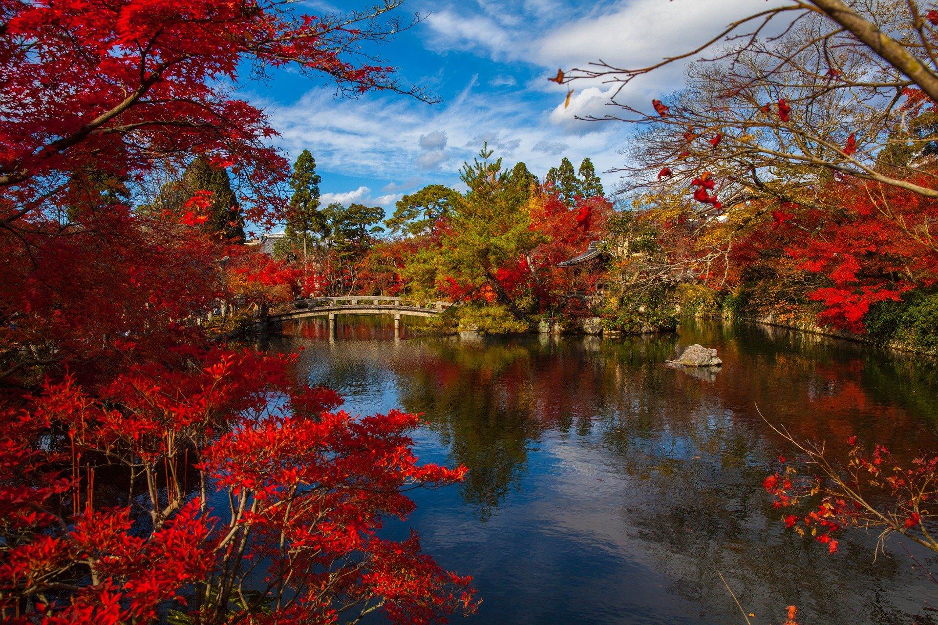 北杜市のおすすめ観光スポット31選!八ヶ岳や清里の美しい自然を楽しもう!