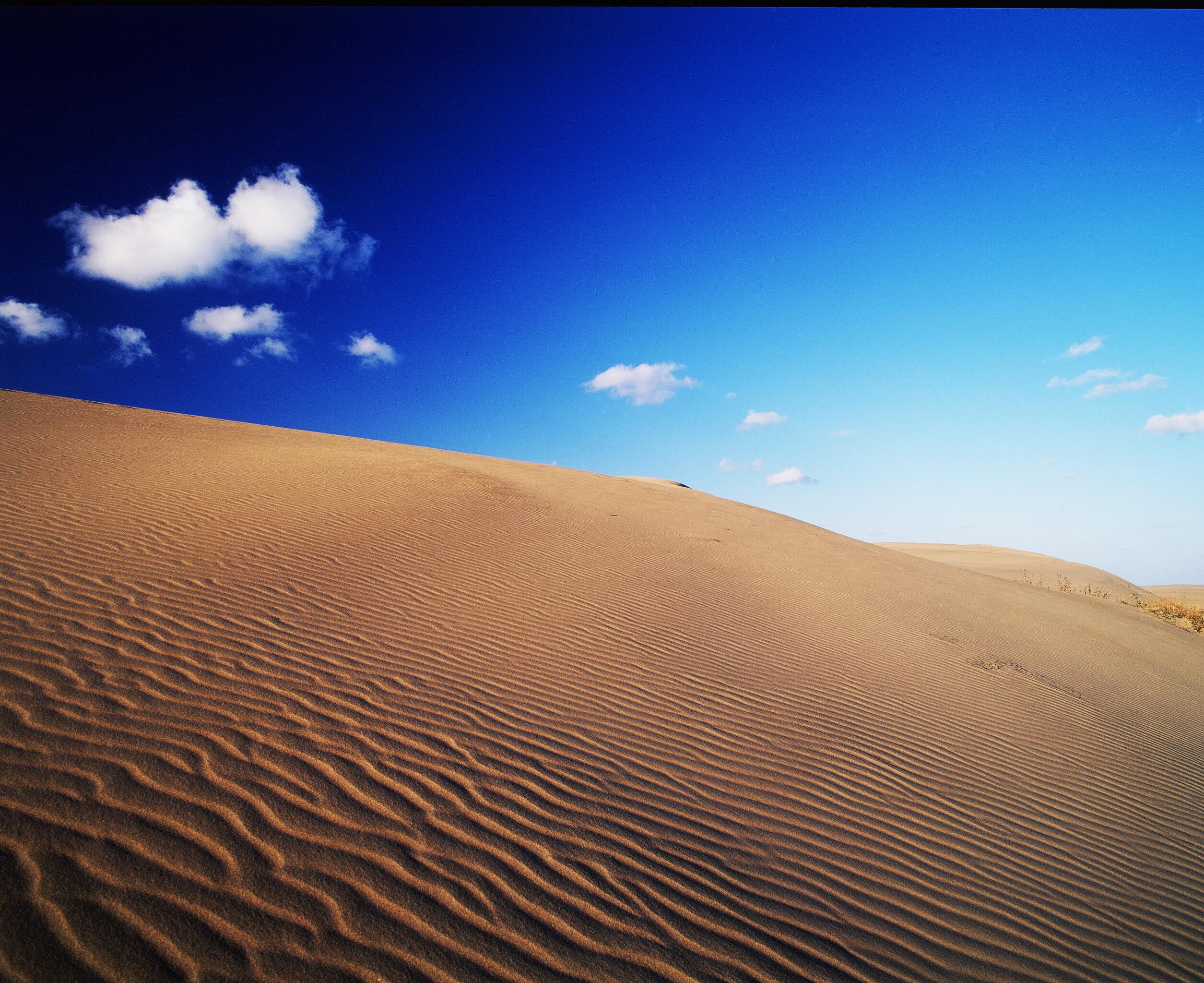 砂丘アクティビティで大地を感じる!鳥取市の外さない観光スポット・体験情報をご紹介!