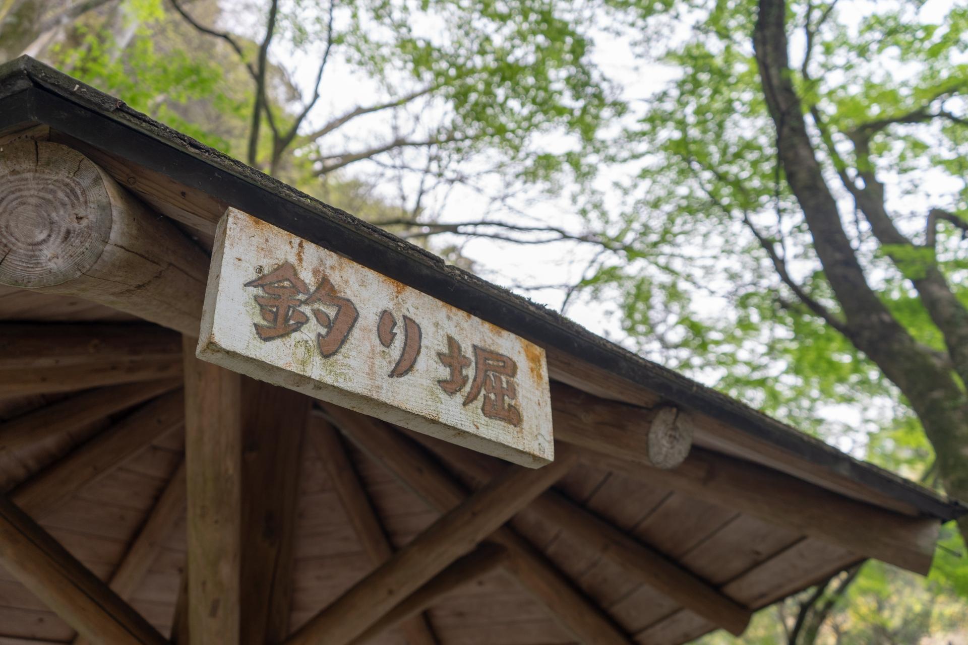 釣り堀サザン(大阪)の攻略法まとめ!釣果や釣れる場所・釣り方を伝授!