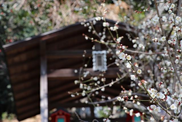 久留米の水天宮は安産祈願で有名なおすすめ神社!お守りや御朱印もチェック!