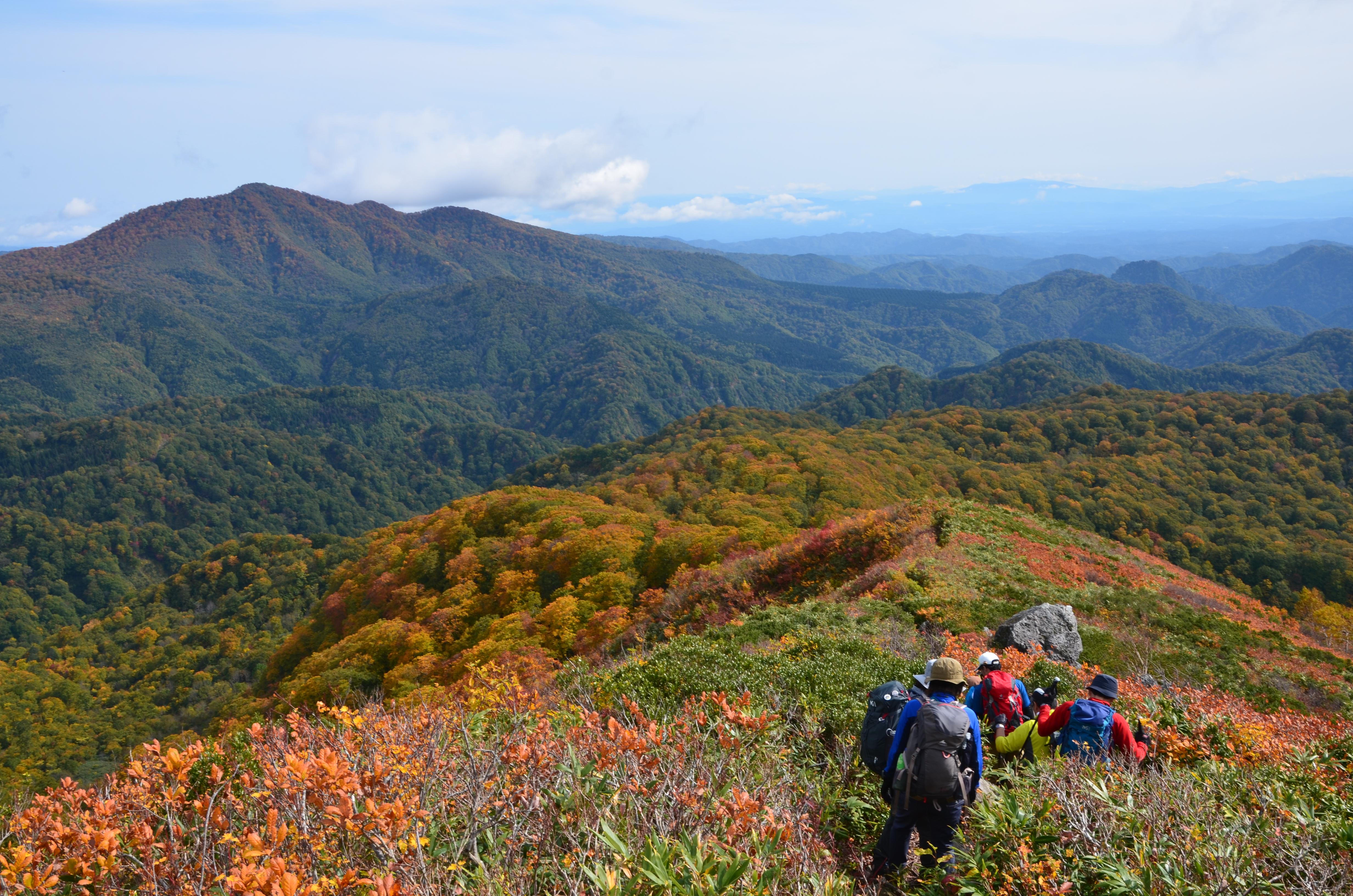 藤里町の自然体験が人気!白神山地や定番観光スポットをご紹介!