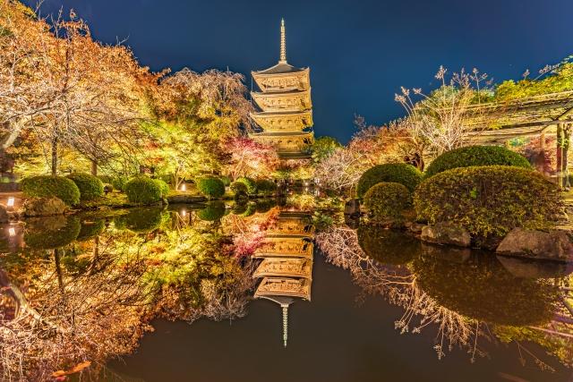 東寺は紅葉ライトアップの夜間特別拝観が大人気!開催時間や混雑状況をチェック!