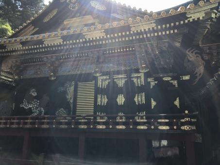 日光東照宮の眠り猫の意味や歴史とは?伝説や見られる場所についても解説!