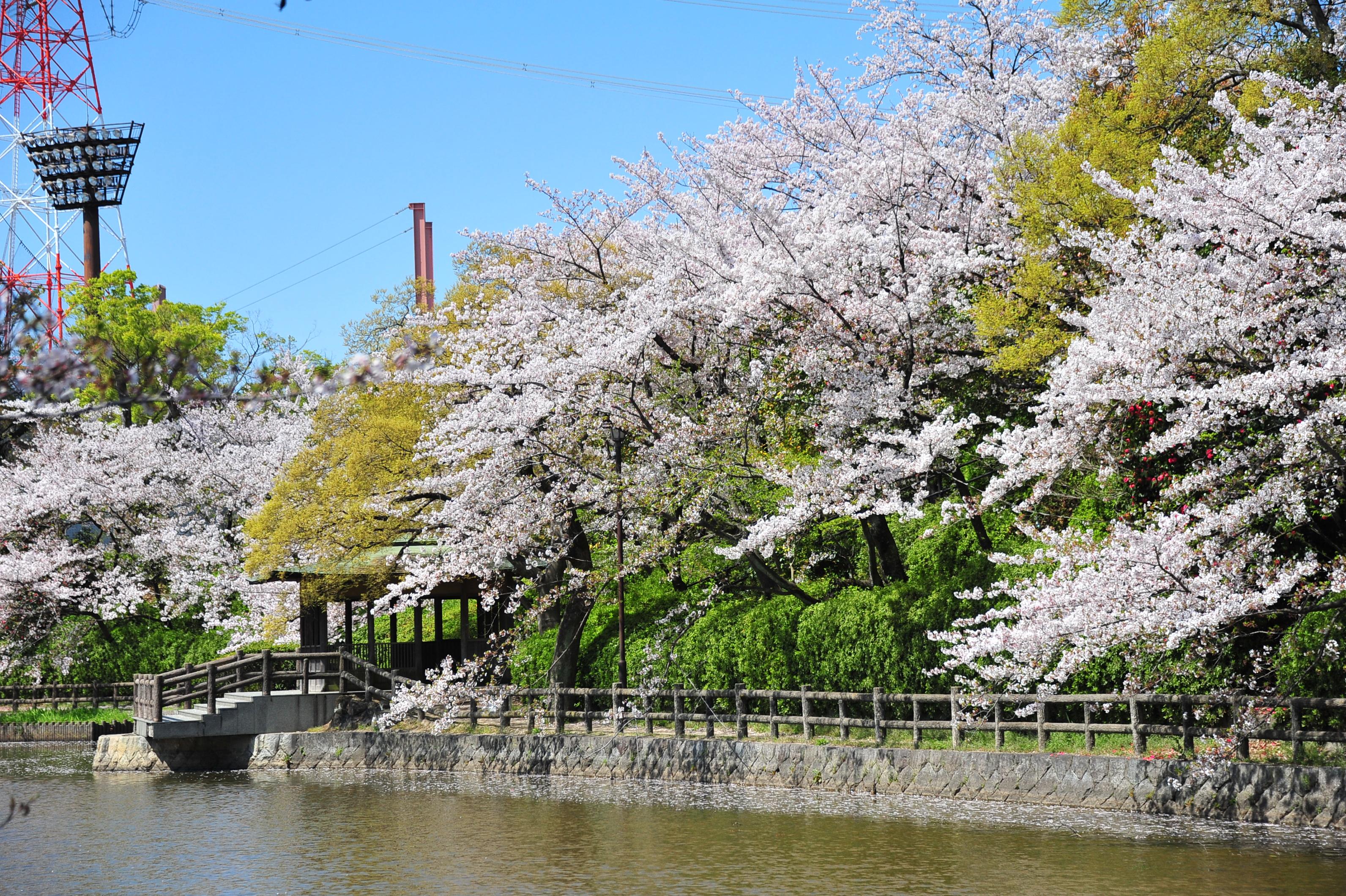 刈谷市は子供と遊べる観光名所が盛りだくさん!特産品や体験スポットも紹介!
