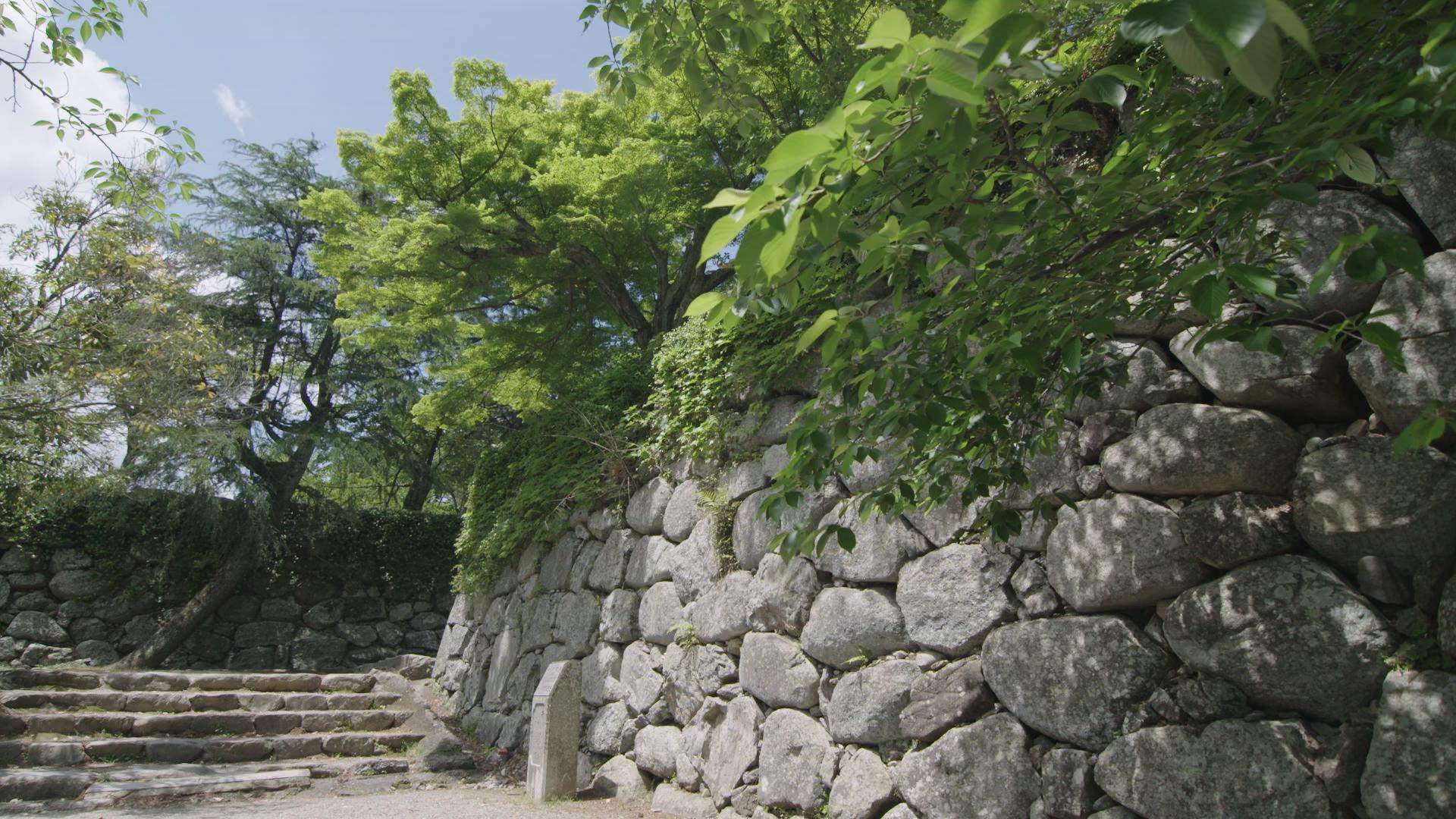 松阪市は個性的な文化・自然・グルメが魅力的な町!豪商の歴史を感じよう!