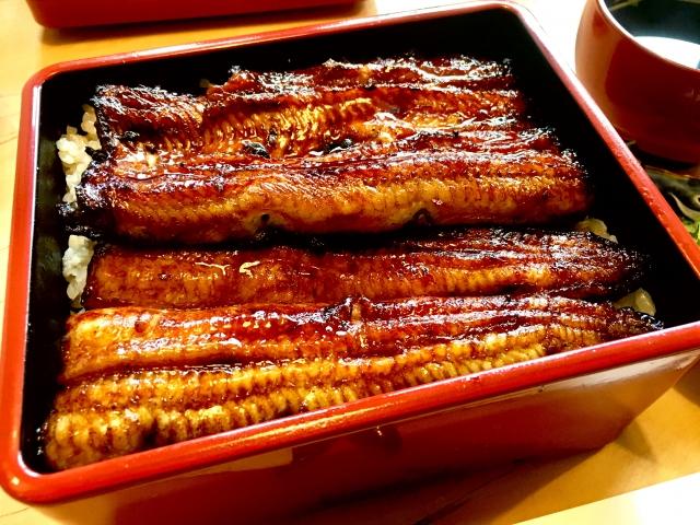 神戸のおすすめうなぎ屋さん5選!老舗や有名店で美味しいひとときを!