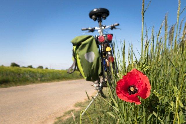 カーゴバイクは大きい荷物を運べる人気自転車!特徴やおすすめアイテムをご紹介