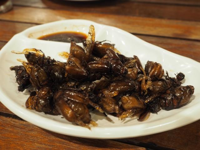日本・海外のゲテモノ料理まとめ!味わえるお店や味を徹底リサーチ!