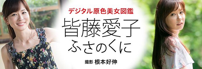 デジタル原色美女図鑑 皆藤愛子 ふさのくに