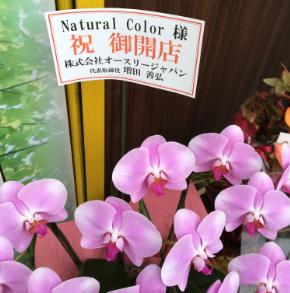 2018.11.1OPEN株式会社オースリージャパン様からきれいなお花をいただきました!