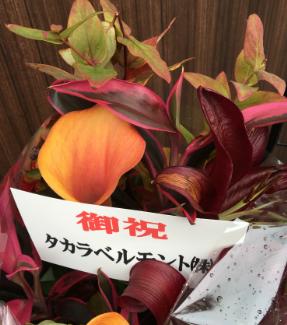 2018.11.1 OPEN タカラベルモント㈱様からきれいなお花をいただきました!