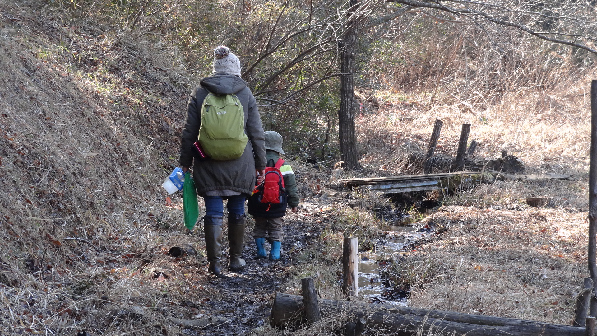 【かくれんぼの森】森の中を親子で探検