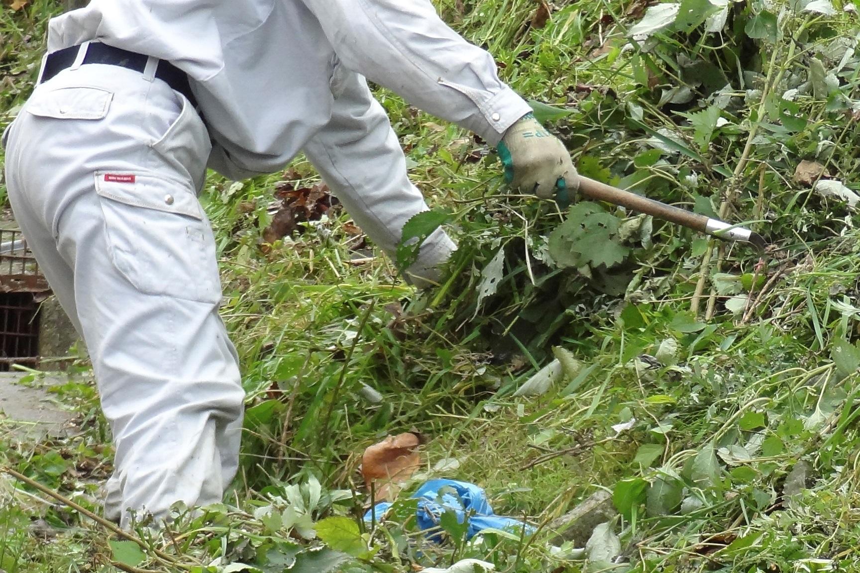 草むしり・草/芝刈り・剪定・水やり
