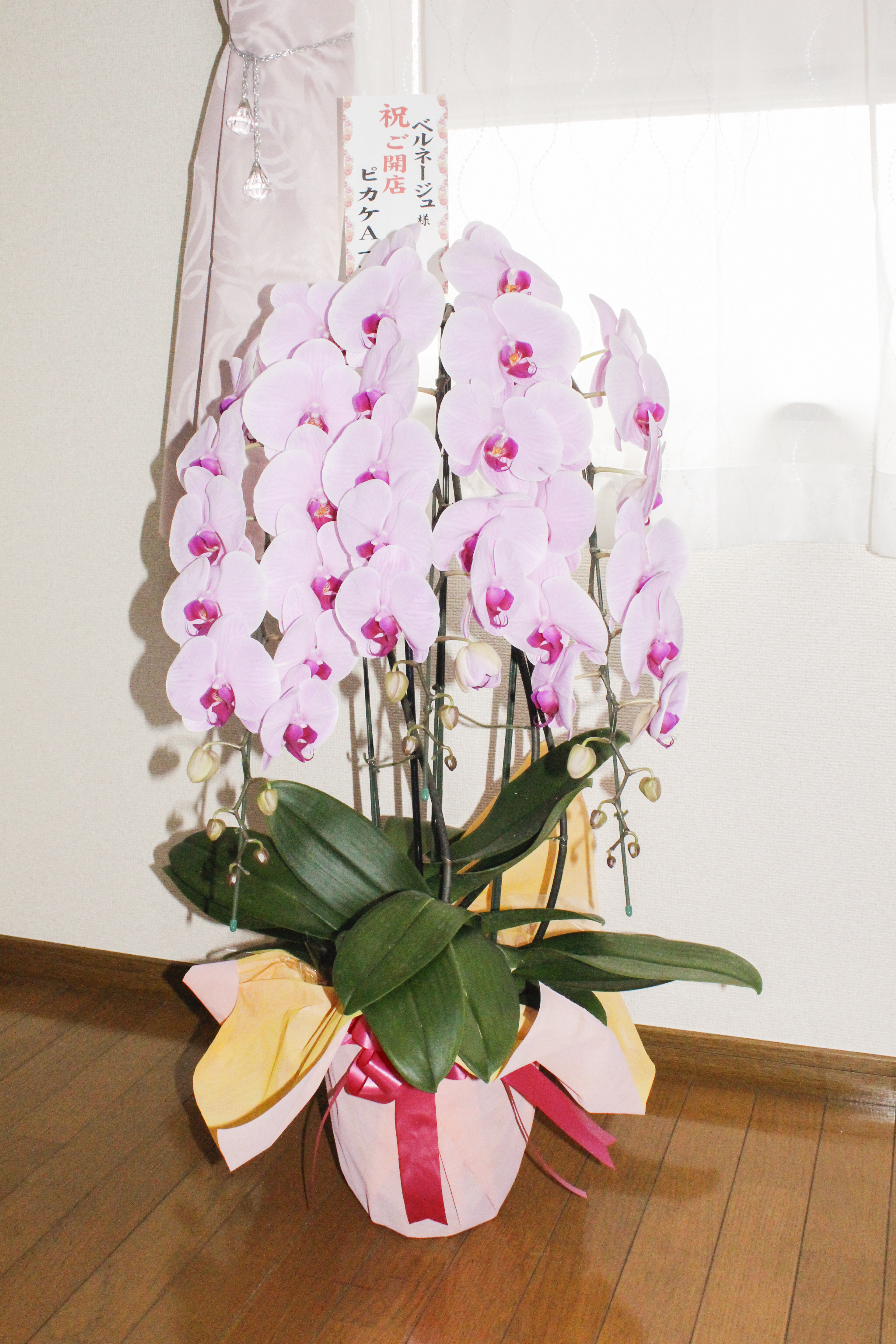 ピカケA様からオープン祝いのお花をいただきました❤
