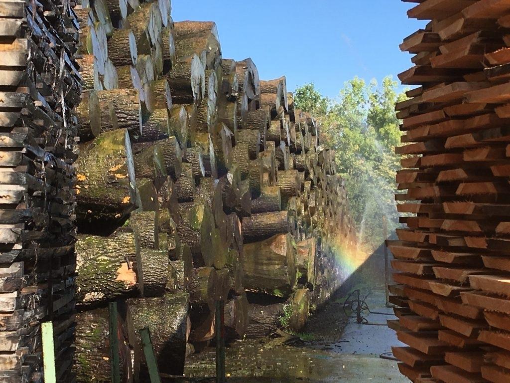 持続可能な森林業と木材産業