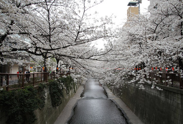 Nakameguroの画像1