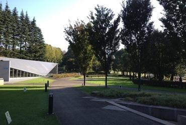 六本木の画像3