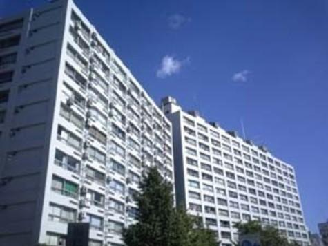 湯島ハイタウンB棟 建物画像1