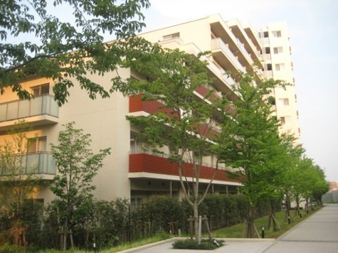 アパートメンツ三軒茶屋・アイビーテラス 建物画像1