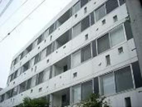 コート向ヶ丘 建物画像1