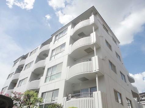 二子玉川ニイヤハイム 建物画像1