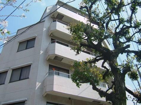 リバティハウス柿の木坂 建物画像1