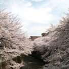 パレステュディオ早稲田 建物画像10