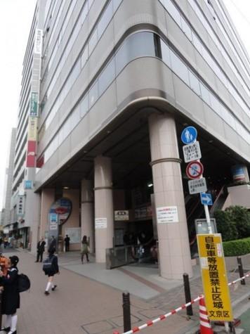シェルトーレ三番町 建物画像10