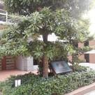 ライオンズプラザ五反田 建物画像10