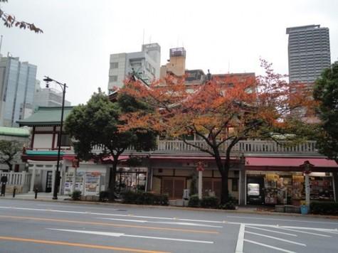 ブレシア日本橋蛎殻町 建物画像10