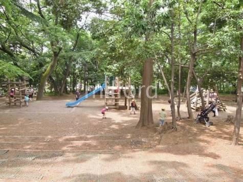 林試の森公園(西門)まで662m