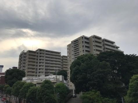 シティコート目黒 建物画像10