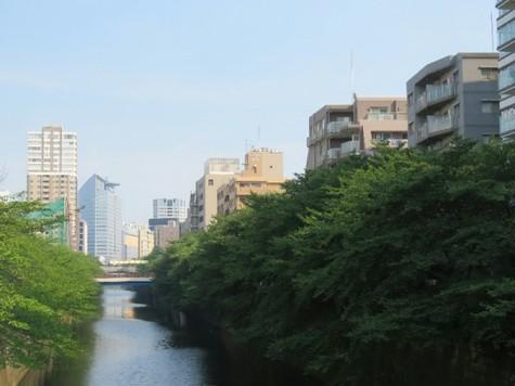 カスタリア目黒(旧:ニューシティレジデンス目黒) 建物画像10
