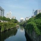 ツインビュー御茶の水 建物画像10