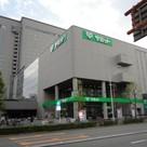 エコロジー東陽町プロセンチュリー 建物画像10
