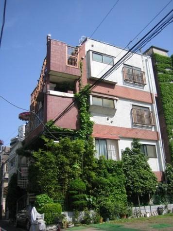 綱島ビル 建物画像2