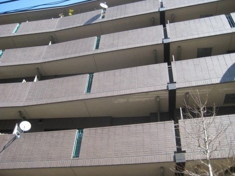 シルフィード南平台C 建物画像2