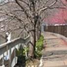 下目黒ポイント 建物画像2