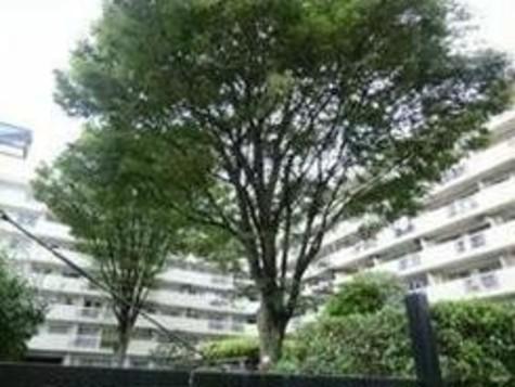 表参道 5分マンション 建物画像2