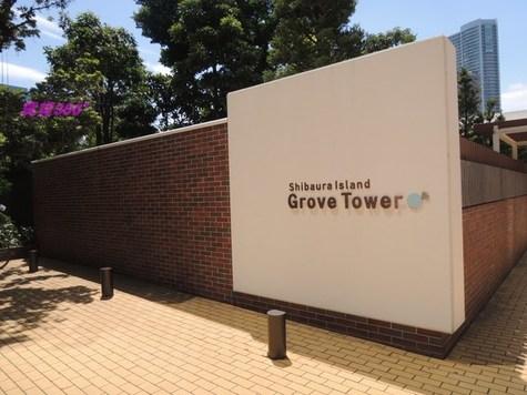 芝浦アイランドグローヴタワー 建物画像2