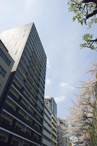 ザ・パークハウス渋谷美竹 建物画像2