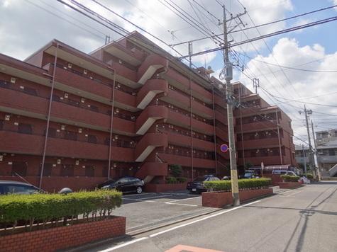 ミ・パラシオ 建物画像2
