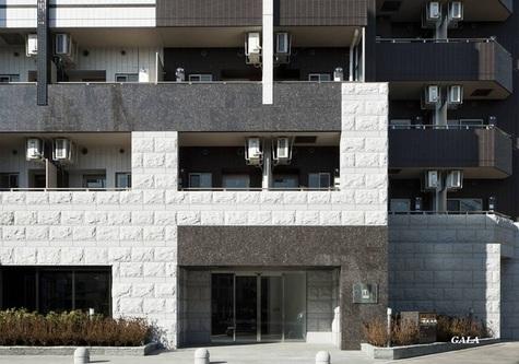 グランド・ガーラ大森 建物画像2