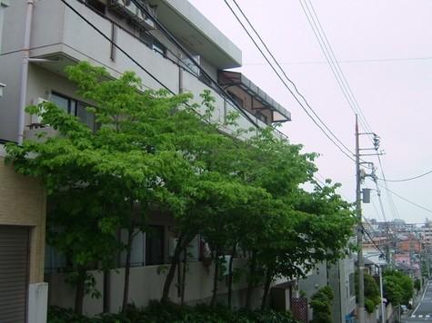 メゾン15(MAISON15) 建物画像2