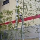 新子安フラット 建物画像3