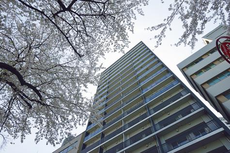 ザ・パークハウス渋谷美竹 建物画像3