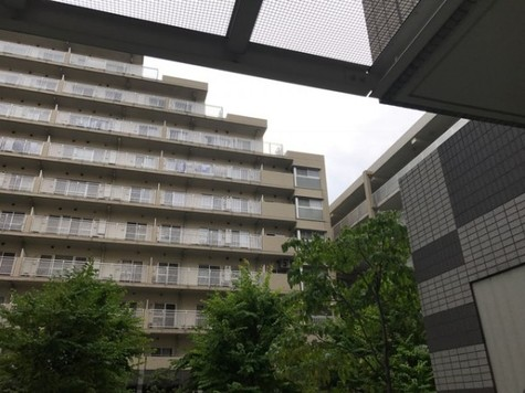 シティコート目黒 建物画像3