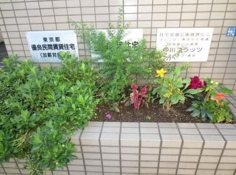 中川フラッツ 建物画像3