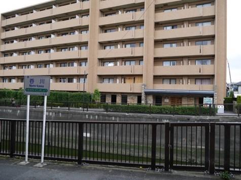 相馬西蒲田マンション 建物画像3